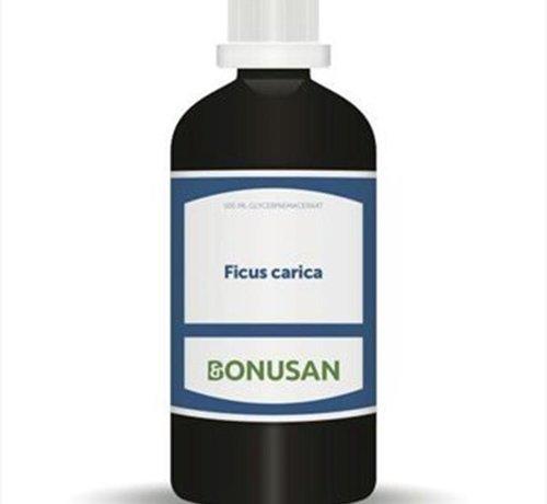 Bonusan Bonusan Ficus carica 100 ml