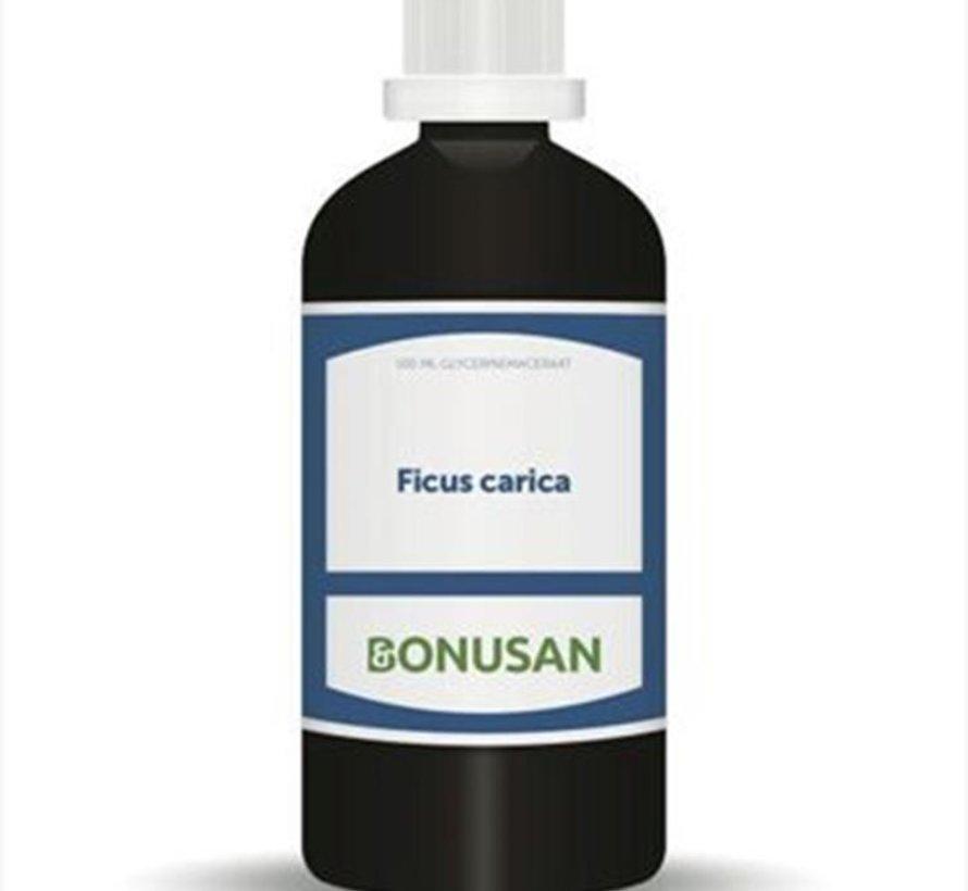 Bonusan Ficus carica 100 ml