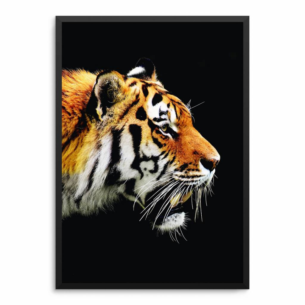 Lovely Bird Tiger Poster