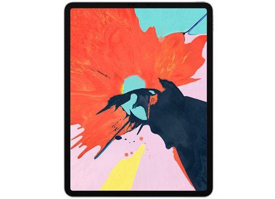 iPad Pro 12.9 inch (2018/2019)