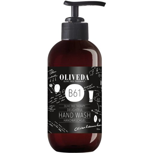 B61 Delightful Hand Wash 250ml
