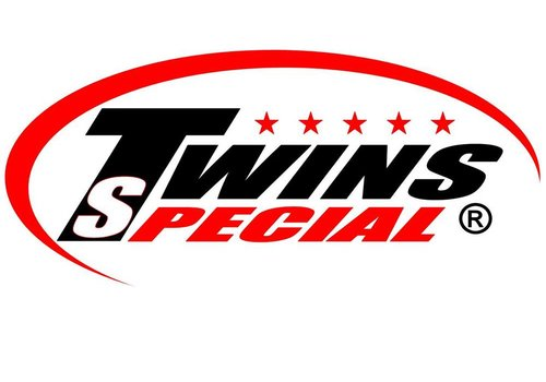 Twins Special Fight Equipment