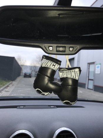 PunchR™  Punch Round Mini Carhanger Boxing gloves