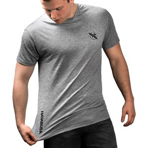 Hayabusa Hayabusa Performance Dry Fit T Shirt Grey