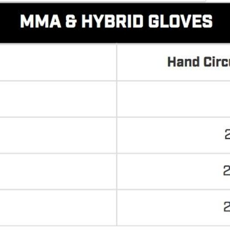 Hayabusa Hayabusa T3 LX Kanpeki 4oz MMA Gloves Italian leather