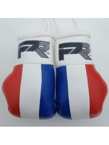 PunchR™  PunchR Mini Carhanger Boxhandschuhe Niederlande