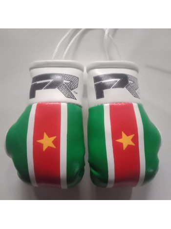 PunchR™  PunchR Mini Carhanger Boxhandschuhe Suriname