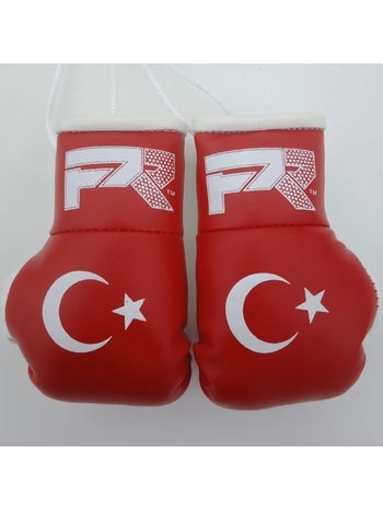 PunchR™  PunchR Mini Carhanger Boxhandschuhe Türkei