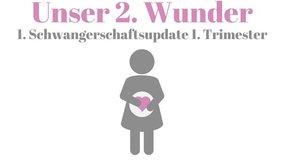 Schwangerschaftsupdate - ich bin schwanger 1. Trimester!
