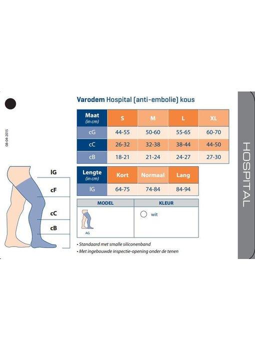 Varodem Hospital Kous AG