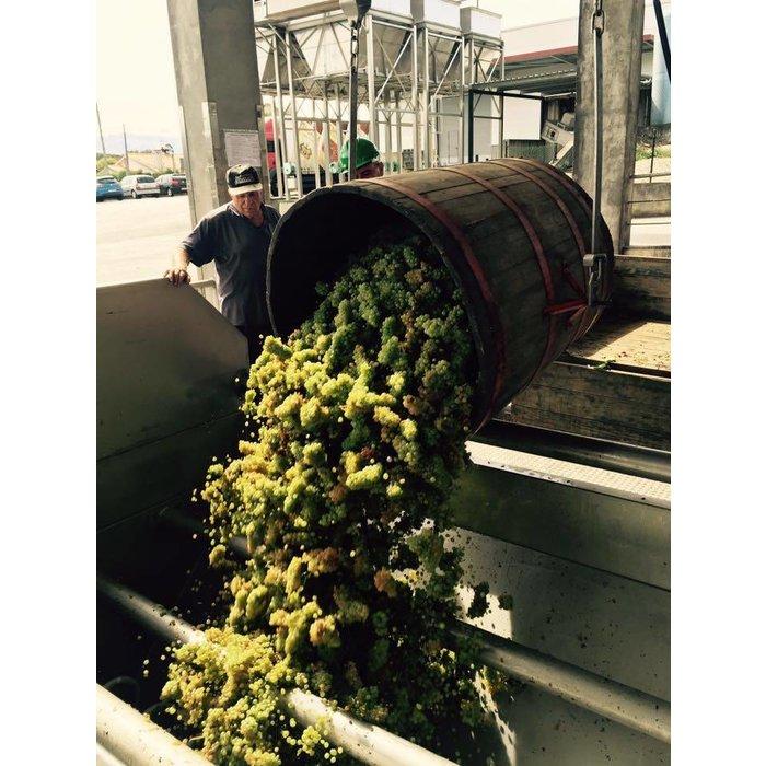 Deu-la-Deu Vinho Verde