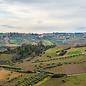 Sidhuri Montepulciano d'Abruzzo Riserva