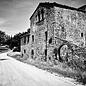Tenute del Pojo Trebbiano d'Abruzzo