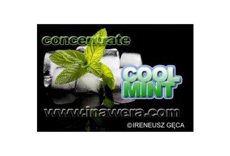 Inawera Konzentriertes CoolMint Aroma - Aroma zum Liquid Mischen mit einer Base