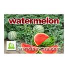 Inawera Wera Garden Wassermelone (konzentriert)