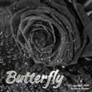 Shadow Burner Butterfly