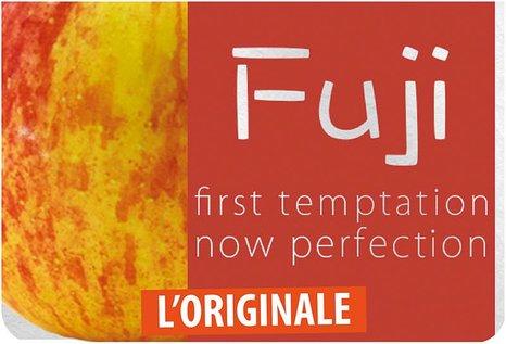 FlavourArt Fuji Apfel - Fertig Liquid für die elektrische Zigarette