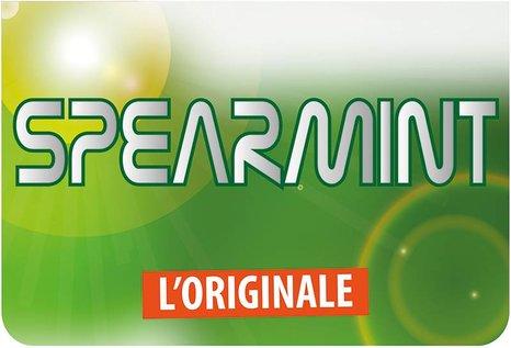 FlavourArt Spearmint (White Winter) - Fertig Liquid für die elektrische Zigarette