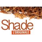 FlavourArt Shade - Aroma