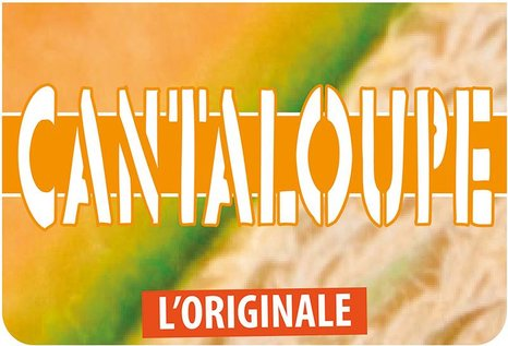 FlavourArt Cantaloupe Melone - Aroma zum Liquid Mischen mit einer Base