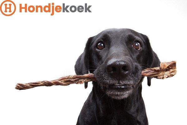 Gedroogde hondensnacks zijn gezond