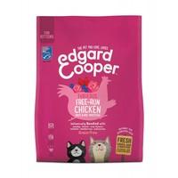 Kitten - Kip, Eend & Witvis