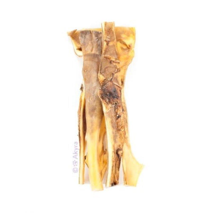 Kameelkophuid 40 cm