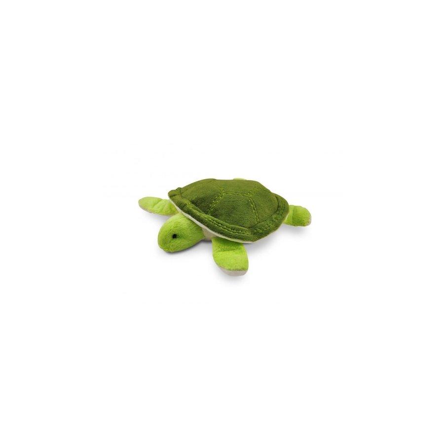*Zeeschildpad