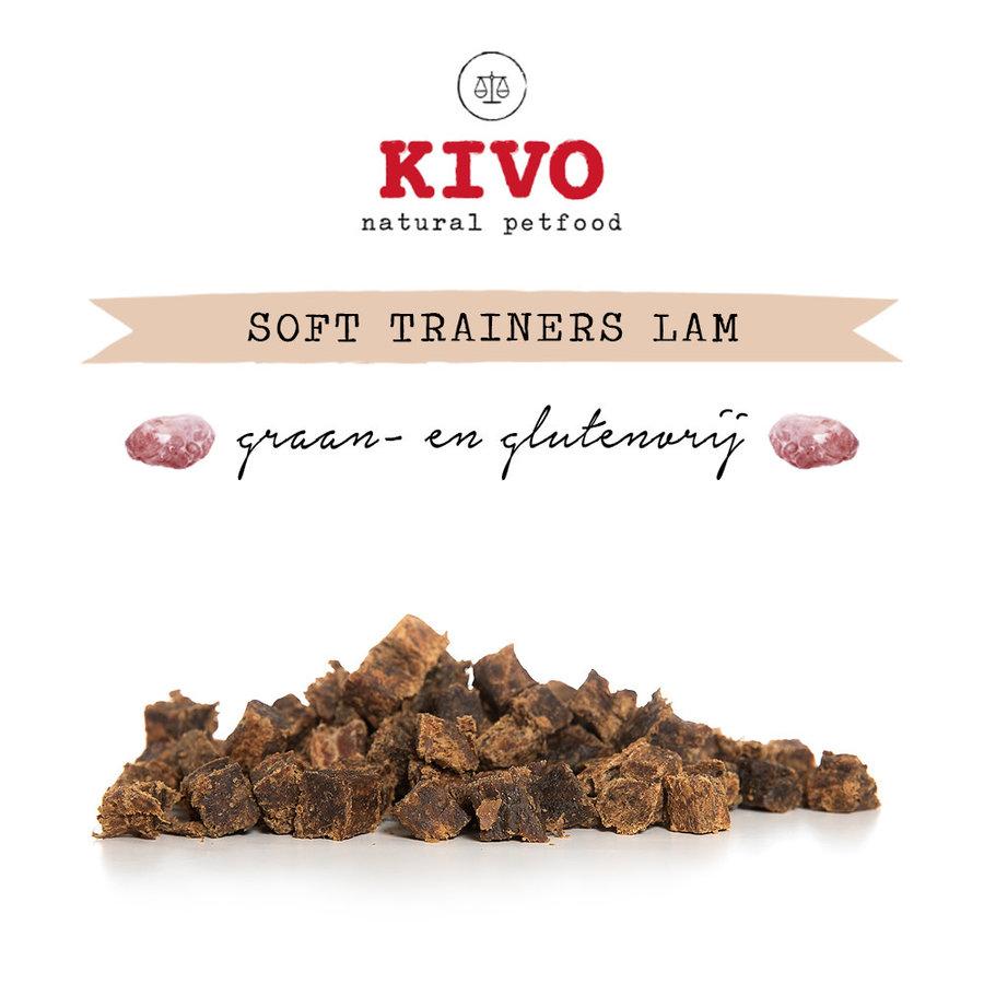 Soft trainers Lam 100 gram