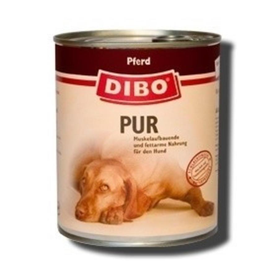 *Dibo Paard