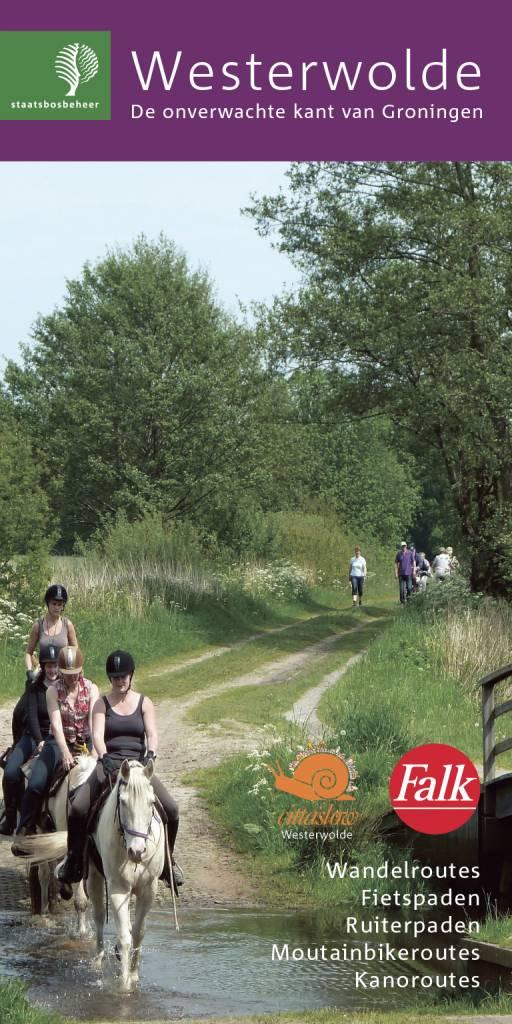 Staatsbosbeheer Wandelkaart 11. Westerwolde, picture 185083841