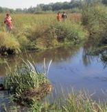 Staatsbosbeheer Wandelkaart 07 Noardlike Fryske Wâlden, picture 86588351