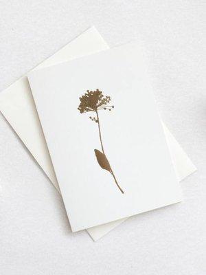 Ola Foil Blocked Card Botanical Collection - Allium