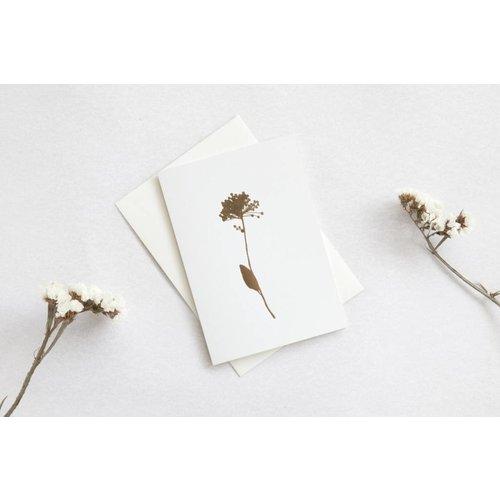 Ola Ola Foil Blocked Card Botanical Collection - Allium