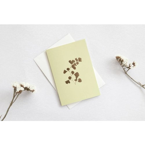 Ola Foil Blocked Card Botanical Collection - Fern