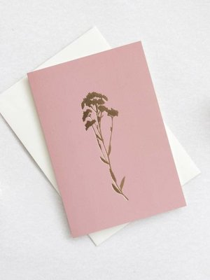 Ola Foil Blocked Card Botanical Collection - Alyssum