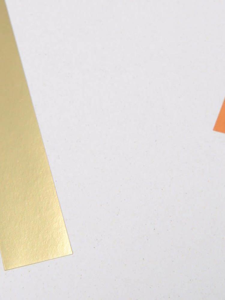 Tom Pigeon Tom Pigeon Balance 3 A2 Print