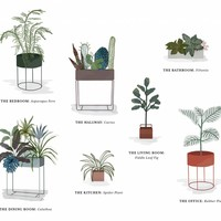 Green Living - the plant guide for your home by Ferm Living