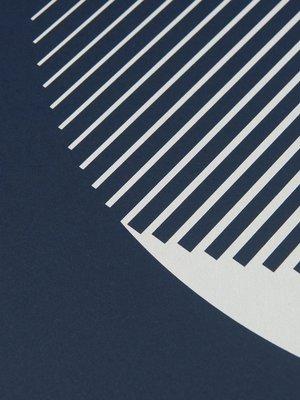 Tom Pigeon Tom Pigeon Luna - Glow in the Dark Print - 500x700mm