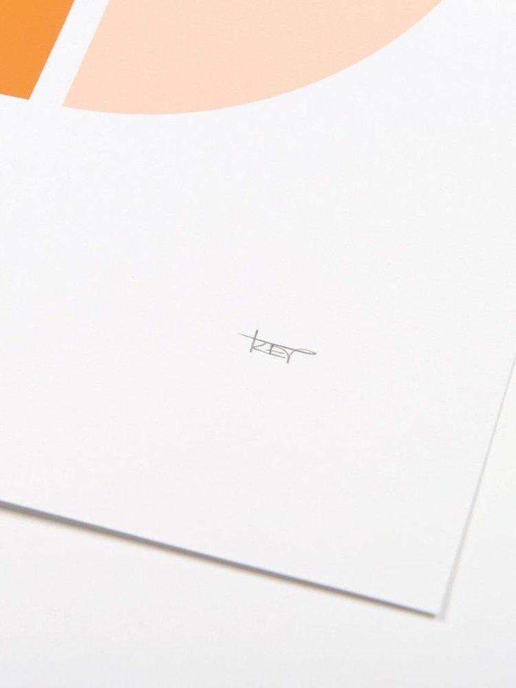 Tom Pigeon Tom Pigeon Object 2 Print - 500x400mm