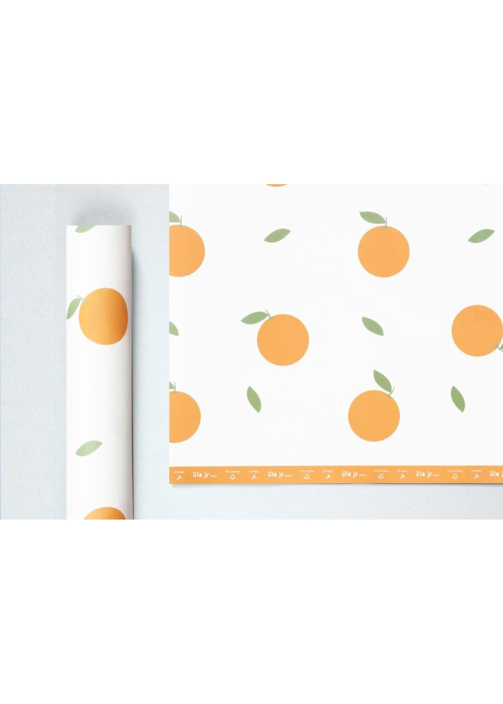 Ola ola jr mini Patterned Papers, Oranges Print