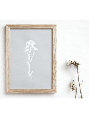 Ola Foil Blocked Print Botanical Collection - Alyssum Grey/White