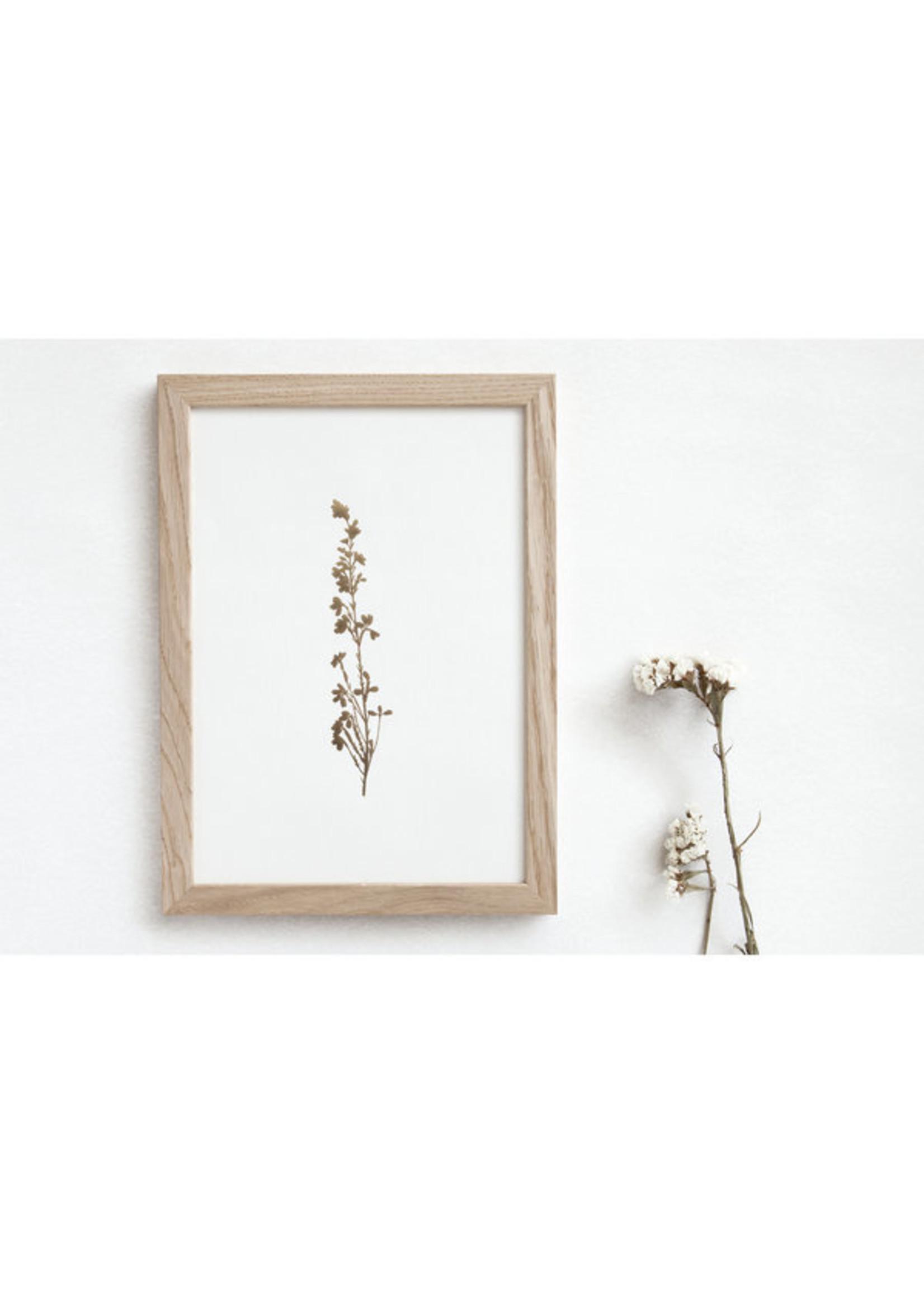 Ola Ola Foil Blocked Print Botanical Collection - Heather Ivory/Brass