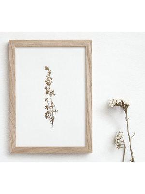 Ola Foil Blocked Print Botanical Collection - Heather Ivory/Brass