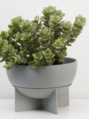 Capra Designs Dome Eros Planter Stone/Grey