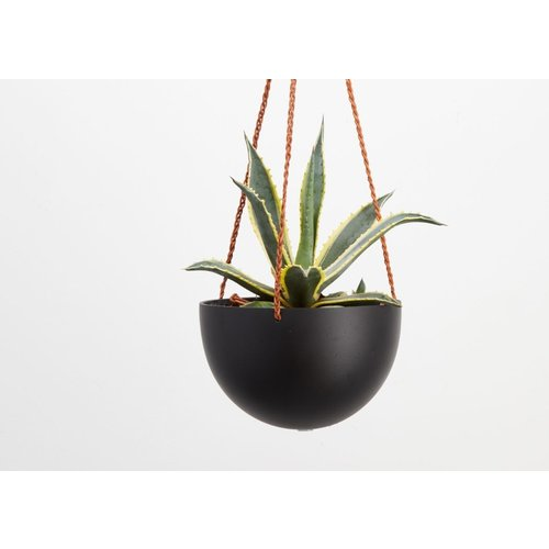 Capra Designs Block Colour Dome Hanging Planter Midnight/Black