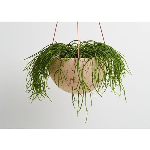 Capra Designs Terrazzo Dome Hanging Planter - 2 Colours