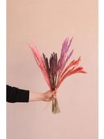 Flora Ray Dried Flower box - Pink - Watermelon Sugar