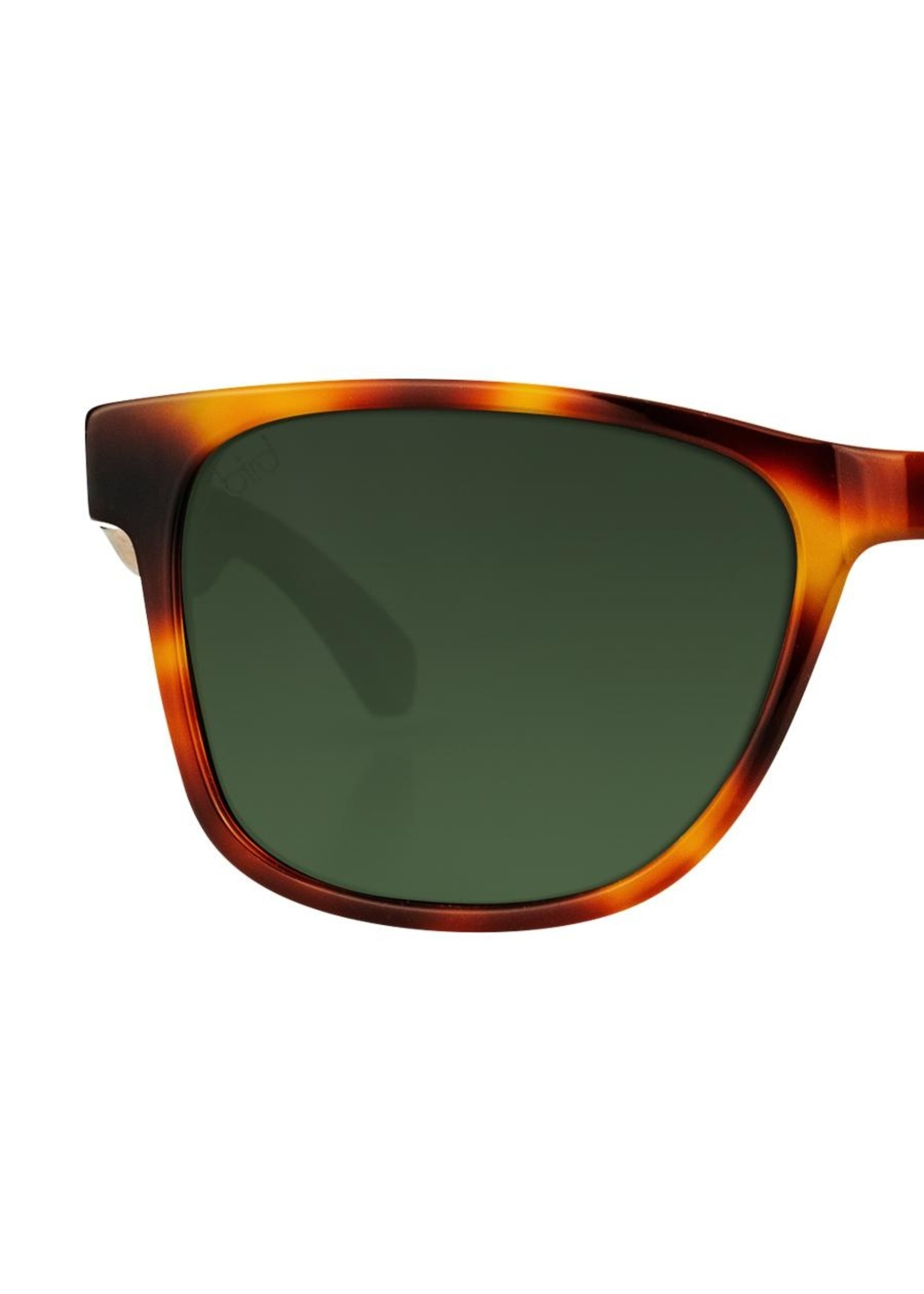 Bird Eyewear Bird Otus Sunglasses - Caramel
