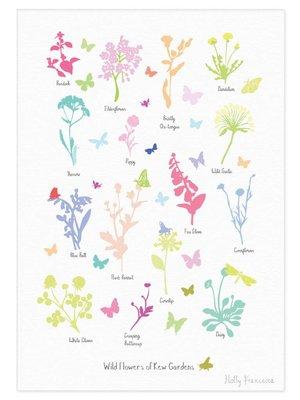Holly Francesca Wild Flowers of Kew Gardens  - A3